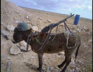 NETO-Forces-after-Years-every-american-will-be-come-like-donkey-afghanistan-funny-animal-pictures