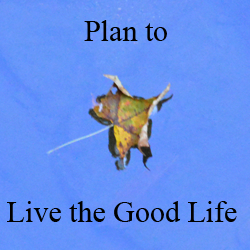 Live the good life